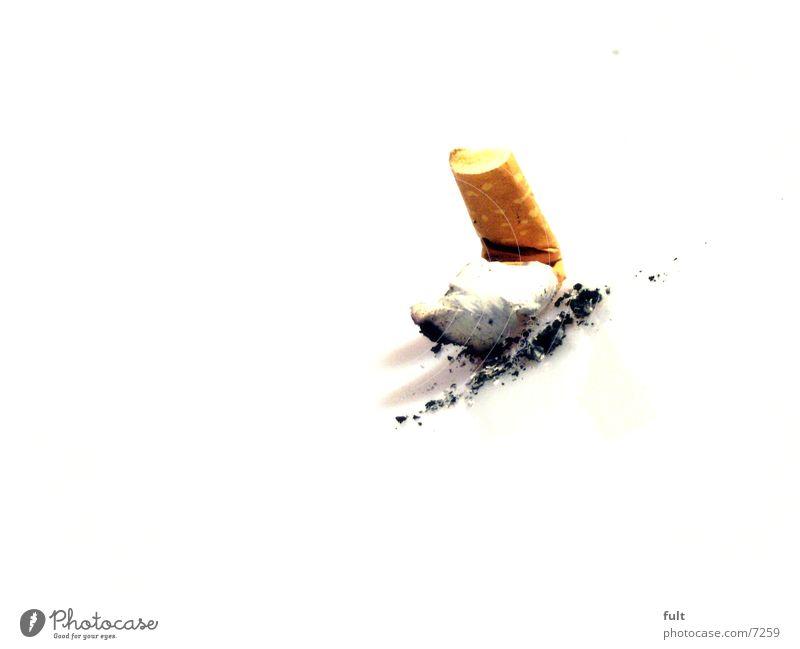 Broken Might Things Smoking Plastic Smoke Intoxicant Cigarette Odor Poison Tar Feeble Last Filter Shellfish