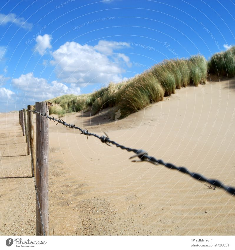 Locked Nature Sand Beach North Sea Baltic Sea Protection Barbed wire Barbed wire fence Barrier Nature reserve Beach dune Marram grass Colour photo Exterior shot