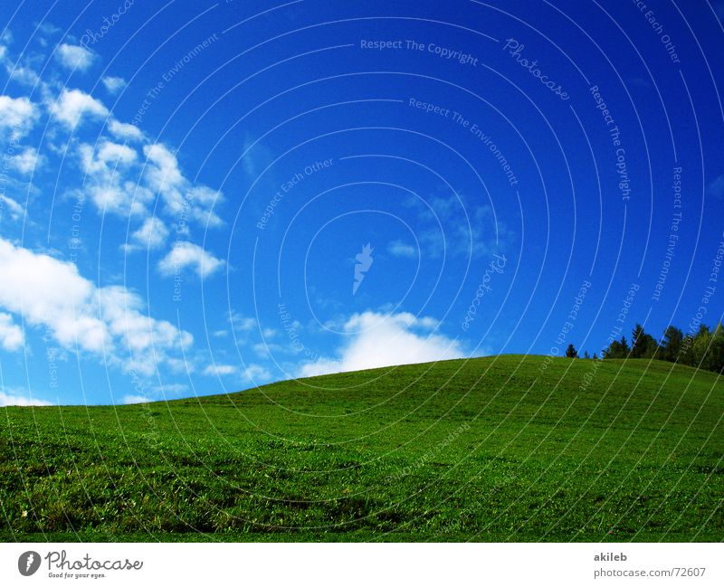 Nature Sky Green Blue Calm Clouds Relaxation Meadow Grass Warmth Background picture Lawn Pasture Safety (feeling of) Fantasy literature