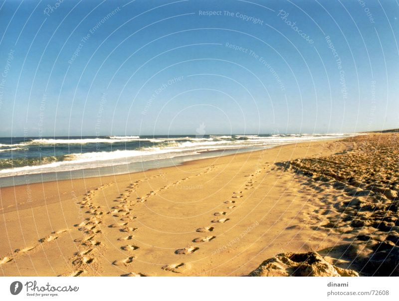 Water Beach Calm Loneliness Sand Waves Serene To enjoy Footprint Blue sky Atlantic Ocean