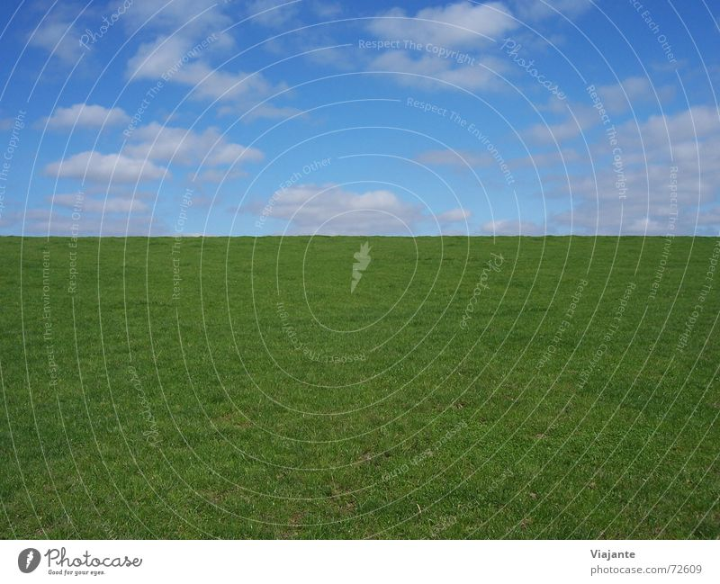 vertical horizon line Meadow Clouds Grass Summer Physics Horizon Sky Germany Green Background picture Nature Calm Structures and shapes no sheep today