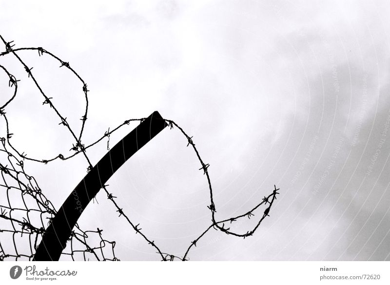 captive Barbed wire Fence Captured Thorny Exit route Clouds Barrier Wire netting Drift Outbreak Narrow Longing Sky Penitentiary Freedom