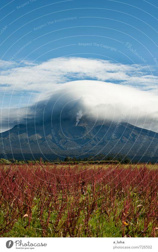 Welcome To Taranaki Environment Nature Landscape Plant Elements Sky Clouds Storm clouds Autumn Bad weather Blossom Rock Mountain Peak Volcano Wanderlust Bizarre