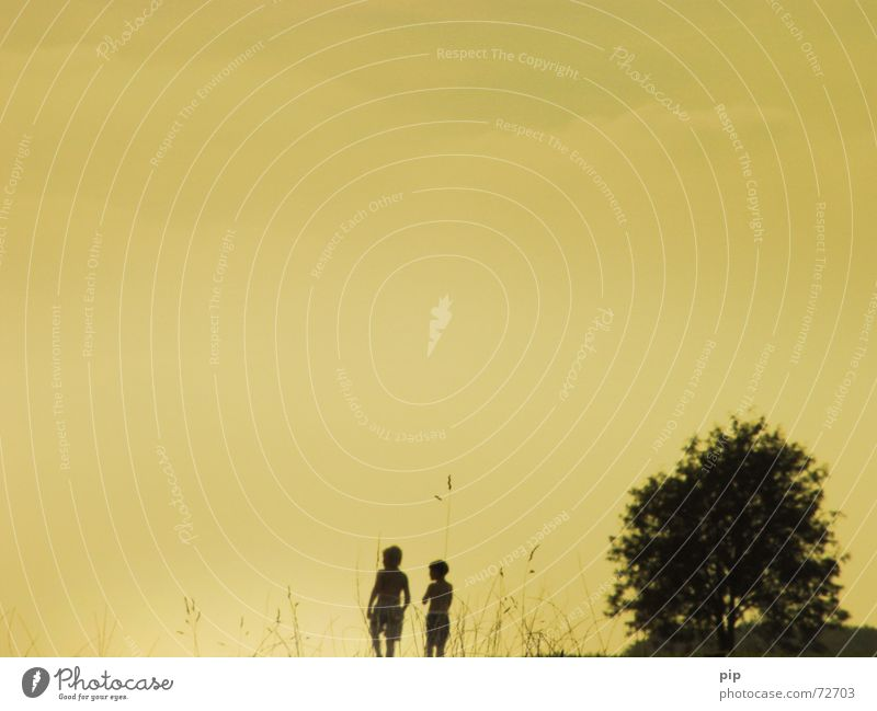 Human being Child Sky Tree Summer Joy Vacation & Travel Boy (child) Playing Grass Freedom Couple Think Warmth Friendship 2