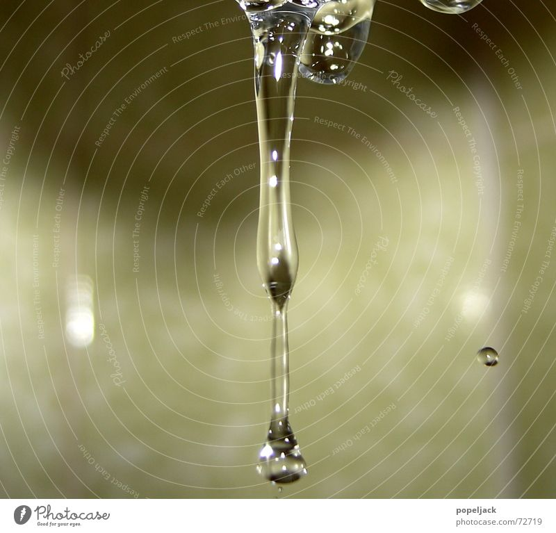 Water Cold Glittering Small Drops of water Wet Fresh Bathroom Clean To fall Clarity Household Take a shower
