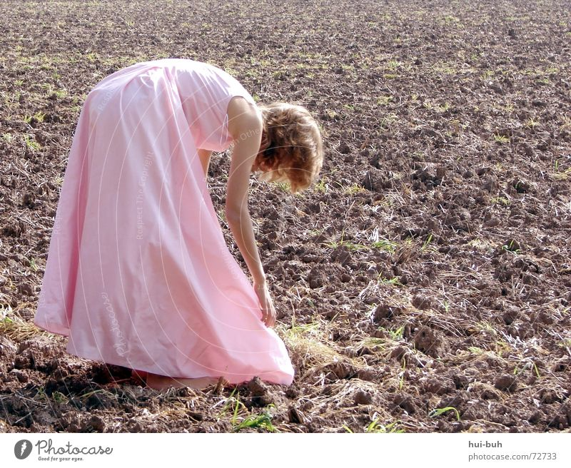 the field princess Dress Fairy tale Pink Work and employment Field Plant Brown Princess stoop Human being child childhood Prince Charming Hero work