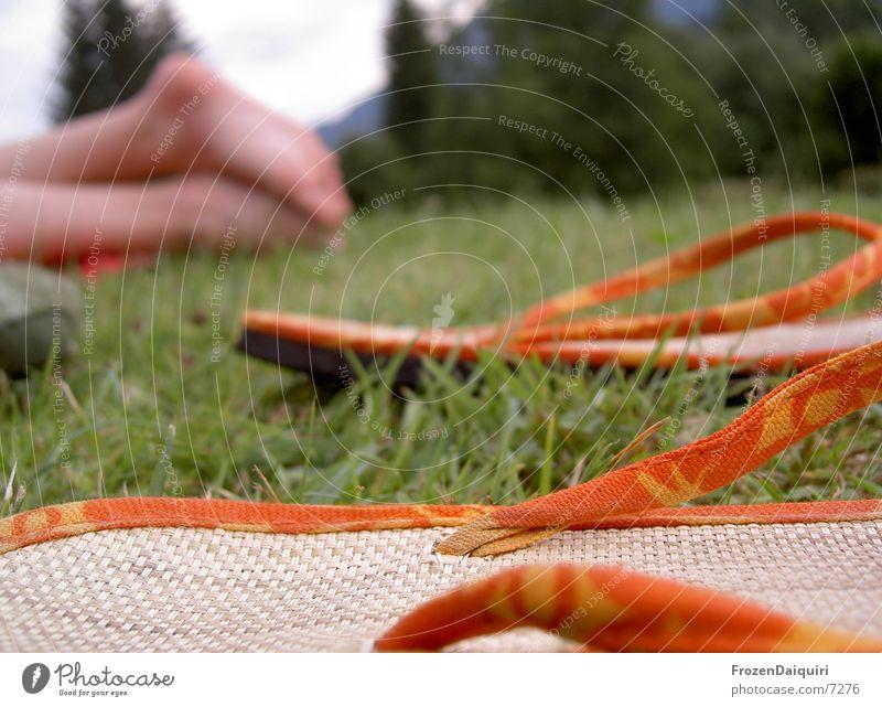 Green Yellow Meadow Feet Footwear Orange Leisure and hobbies Federal State of Tyrol Sandal Flip-flops Bast