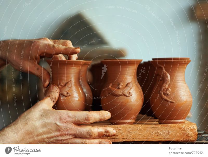 finishing touches Human being Skin Hand Fingers Art Artist Work of art Near Brown Clay Potter Pottery Gecko Lizards Craft (trade) Master craftsman Colour photo