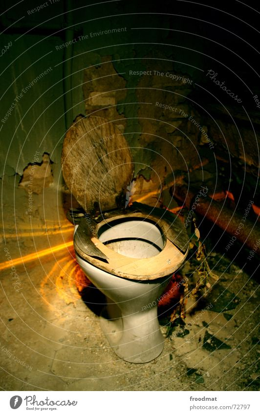 lavatory Dusty Dirty Plaster Eyeglasses Wood Long exposure Needs Village Urinal Trash Light Drainage Hideous Creepy Cleaner Plant Toilet Loneliness Death