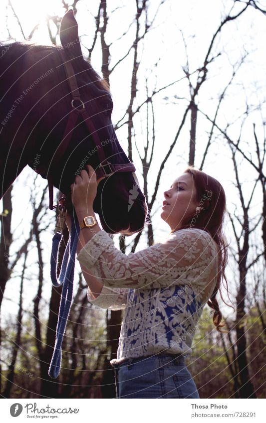 Together you are less alone II Animal Horse Animal face Pelt 1 Old Tall Beautiful Wild Soft Anger Serene Patient Calm Self Control Young woman Brown White