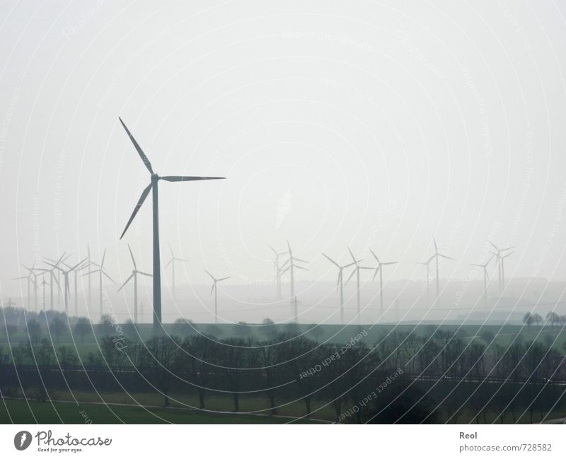 And another turn Agriculture Forestry Industry Energy industry Renewable energy Wind energy plant Nature Landscape Clouds Spring Bad weather Fog Field Pinwheel