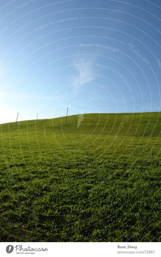 infinitely Infinity Meadow Grass Structures and shapes Landscape Deep steffisburg