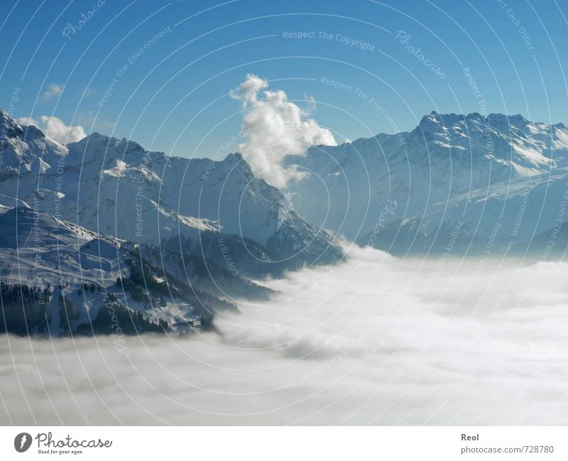 A sea of fog Winter sports Environment Nature Landscape Cloudless sky Horizon Beautiful weather Fog Mountain Alps Ski resort Peak Snowcapped peak Ski run Large