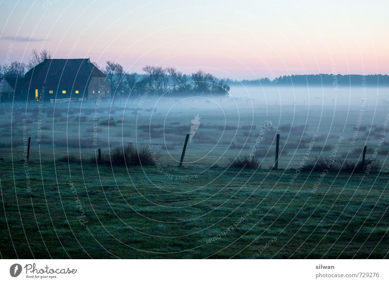 foggy farm Landscape Spring Beautiful weather Fog Bushes Moss Field Threat Creepy Cold Calm Dream Loneliness Farm House (Residential Structure) Fence Fence post