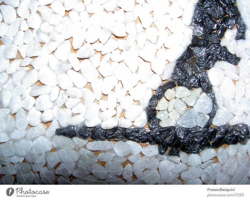 Pebble picture/white Mosaic Macro (Extreme close-up) White Black Gray Living or residing Image Close-up