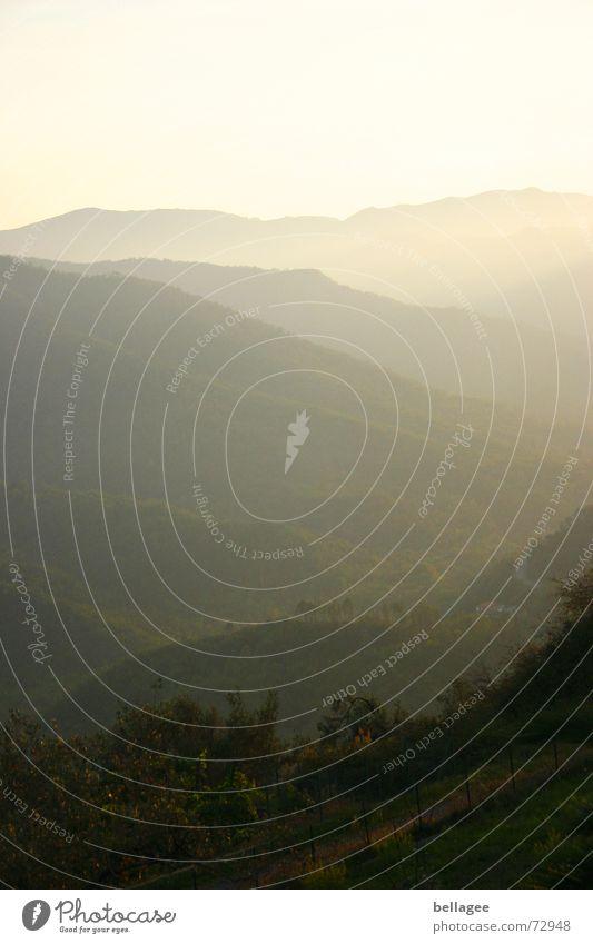 Green Yellow Grass Mountain Landscape Fog Horizon Bushes Italy Hill Liguria