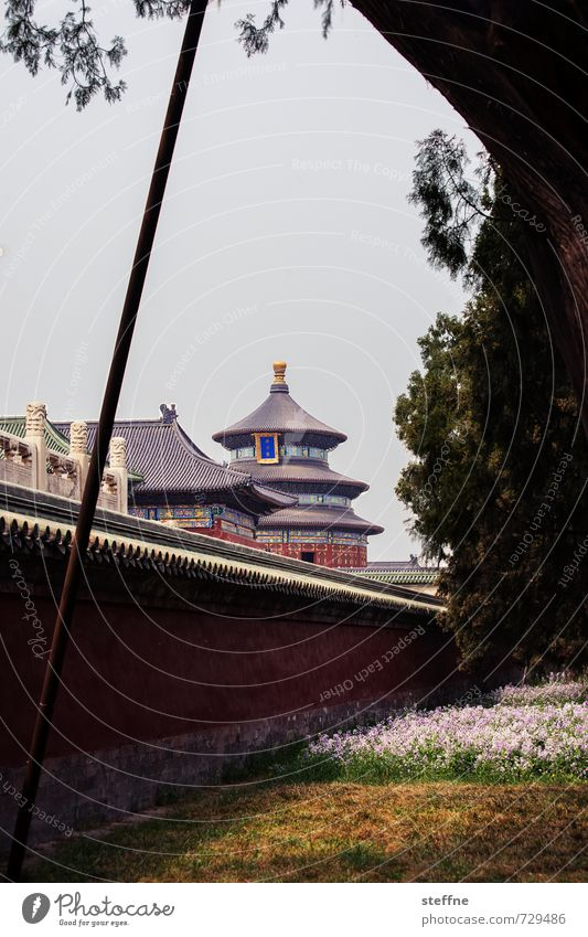 City Spring Park City life China Temple Beijing Cinese architecture