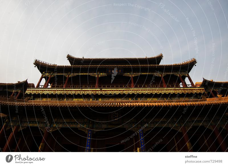 temple Beijing China Palace Eroticism Temple Cinese architecture Beautiful weather Sky Gold Colour photo Wide angle