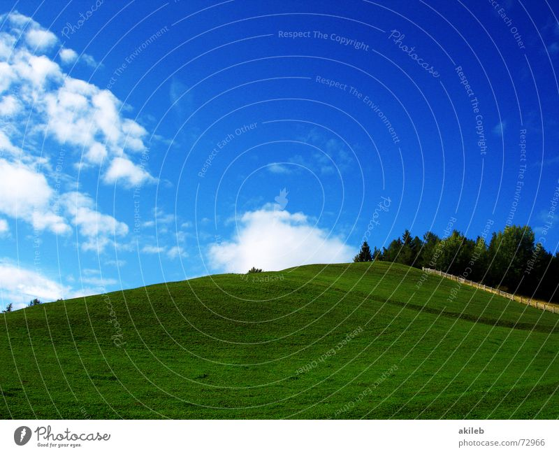 Nature Sky Green Blue Calm Clouds Relaxation Meadow Grass Warmth Background picture Lawn Pasture Colour Safety (feeling of) Fantasy literature