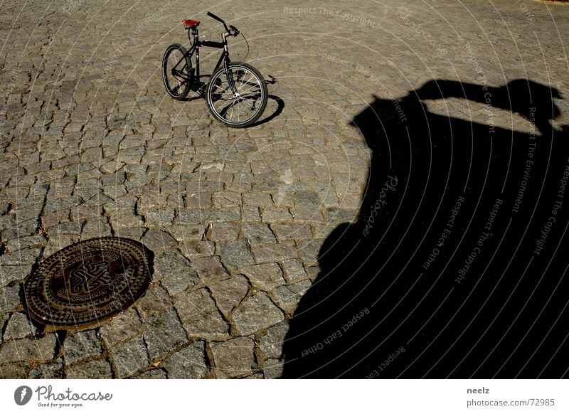Well roared...01 Bicycle Gully Lion Braunschweig Shadow Cobblestones Structures and shapes Beautiful weather