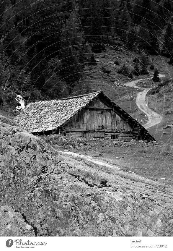 How much further? Breathe Alpine pasture Break Barn Hut Livestock Grass Larch Forest Mountain pasture Loneliness Badlands Decline Weathered Deserted Steep Rock
