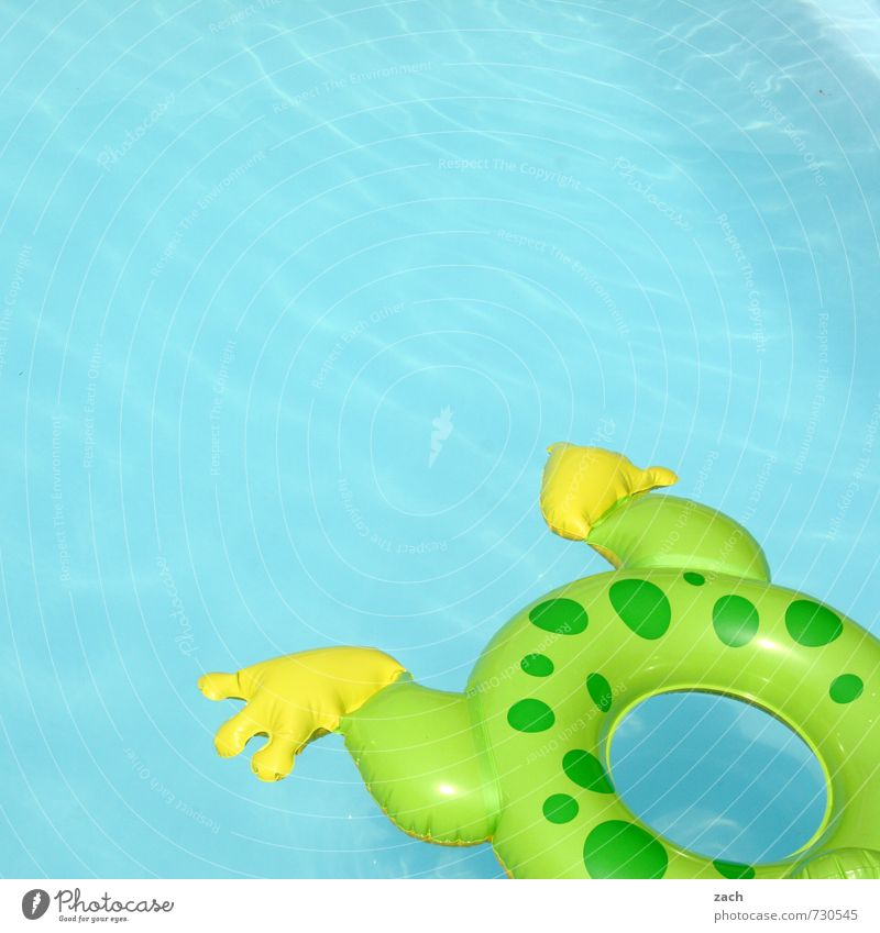 frog's leg Joy Wellness Well-being Relaxation Spa Swimming & Bathing Leisure and hobbies Playing Tourism Summer Summer vacation Sun Sunbathing Beach Ocean Waves