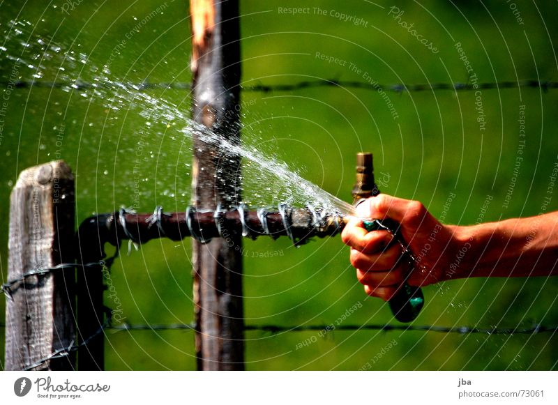 does good! Hose Well Hand Thumb Fingers Barbed wire Fence Wire Wood Pole Wet Cold Refrigeration Damp Grass Green Meadow Water Inject Drops of water Arm Thorn