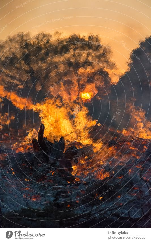 Easter fire Nature Fire Sun Sunrise Sunset Sunlight Spring Beautiful weather Feasts & Celebrations Colour photo Exterior shot Abstract Deserted Day Evening