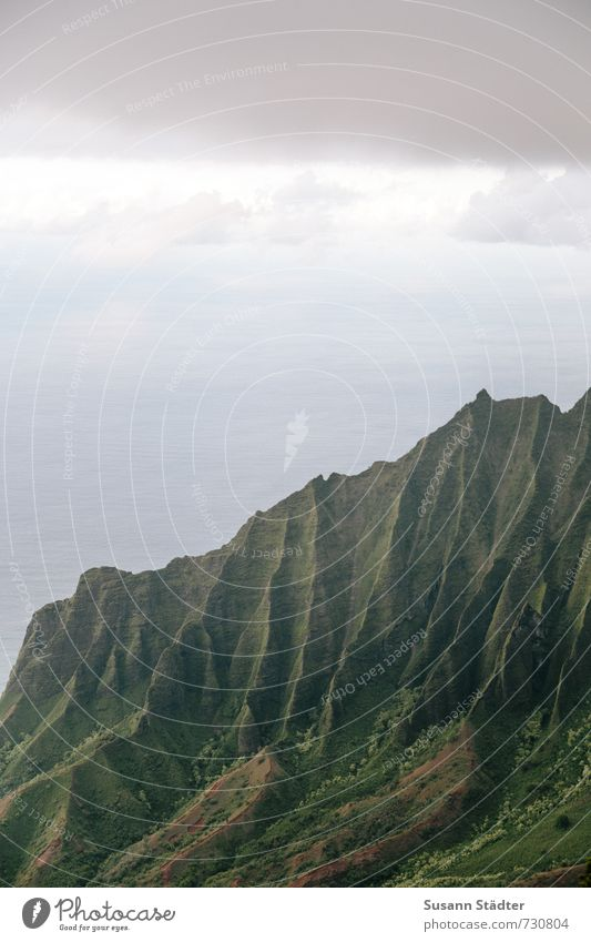 Na Pali Coast State Park Nature Landscape Summer Grass Rock Mountain Canyon Ocean Famousness Hawaii Kauai Wrinkles Untouched Colour photo Exterior shot Abstract