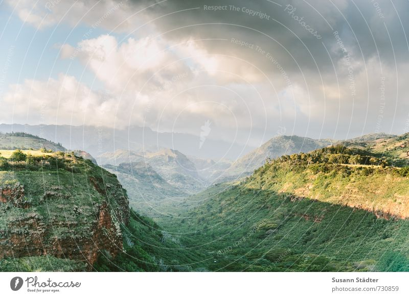 waimea valley Landscape Clouds Beautiful weather Authentic Weimea Waimea Canyon Kauai Hawaii Forest Tropical Colour photo Exterior shot Deserted Copy Space top