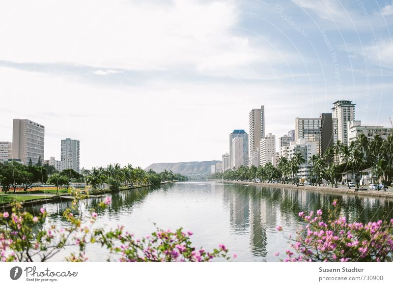 Ala Wai Canal Summer Coast River bank Town Capital city Skyline House (Residential Structure) High-rise Bank building Bridge Tourist Attraction Esthetic Bright