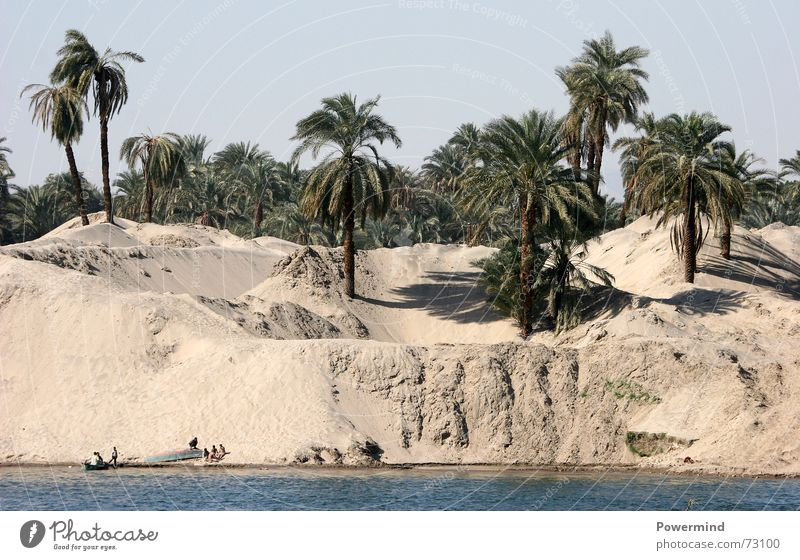 Water Sand River Africa Thin Appetite Palm tree Beach dune Fishery Sahara Egypt Steam Nile Die of thirst