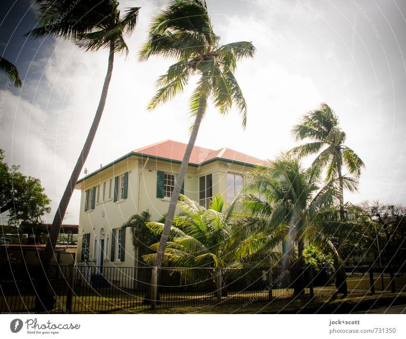 Customs House Architecture Colonial style Sky Warmth Exotic Palm tree Garden House (Residential Structure) Facade Oriel Metalware Bright Retro Idyll Climate