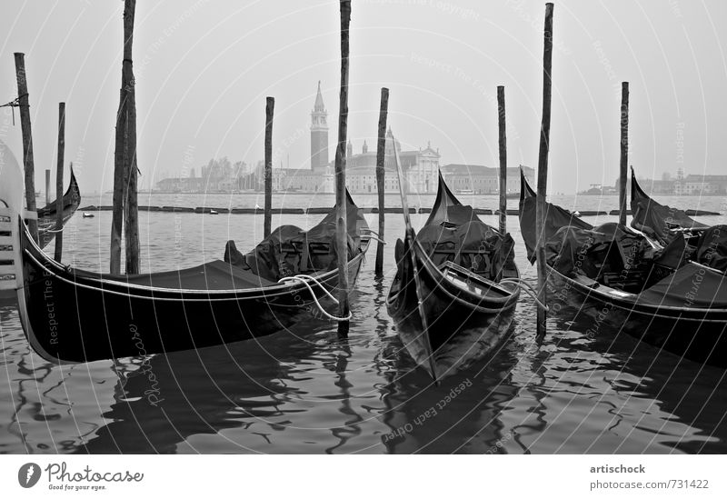 Gondolas in Venice Port City Downtown Populated Harbour Tourist Attraction Watercraft Culture Perspective 2011 Black & white photo Exterior shot Dawn