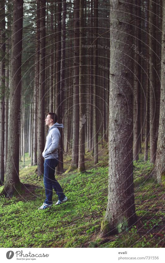 In the woods I Human being Masculine Young man Youth (Young adults) Man Adults Body 1 13 - 18 years Child 18 - 30 years Nature Landscape Tree Forest Jeans