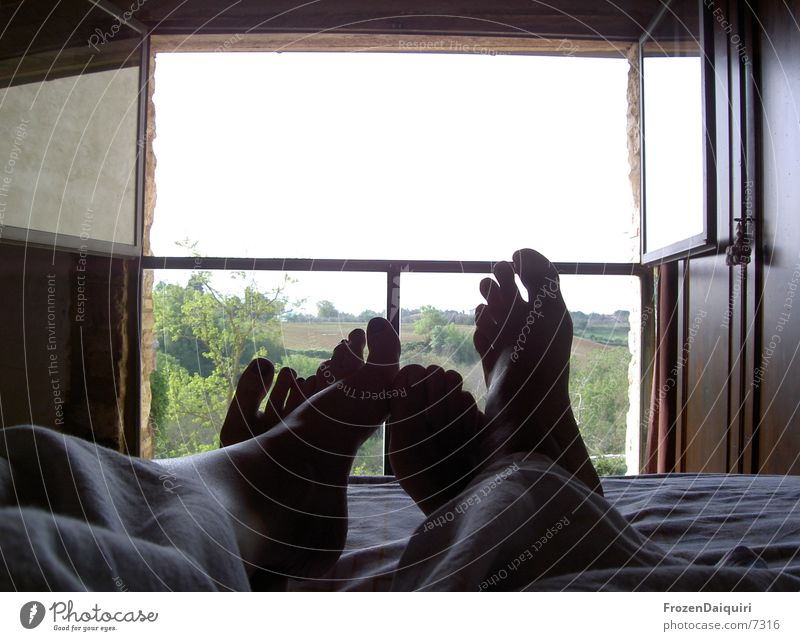 Human being Vacation & Travel Window Freedom Couple Feet 2 Together Leisure and hobbies Open Lie Free In pairs Sleep Future Bed