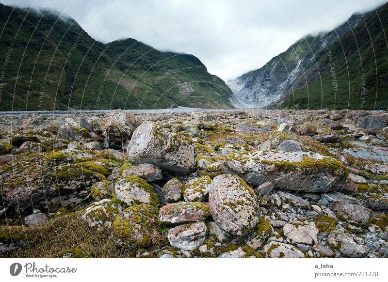 Franz Josef Glacier Valley Environment Nature Landscape Plant Elements Earth Water Sky Clouds Storm clouds Summer Bad weather Rain Moss Wild plant Rock Alps