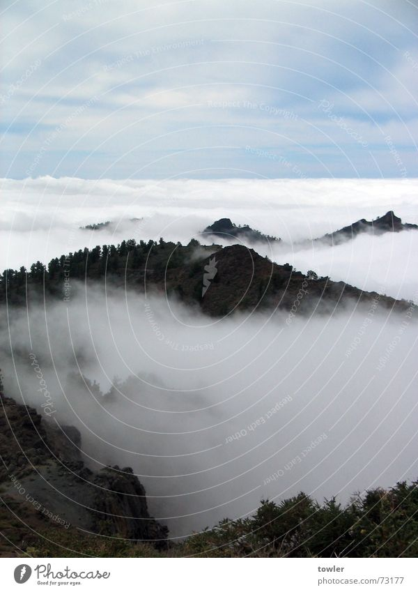 Blue White Clouds Far-off places Mountain Above Gray Fog Large Peak Spain Cloud forest La Palma