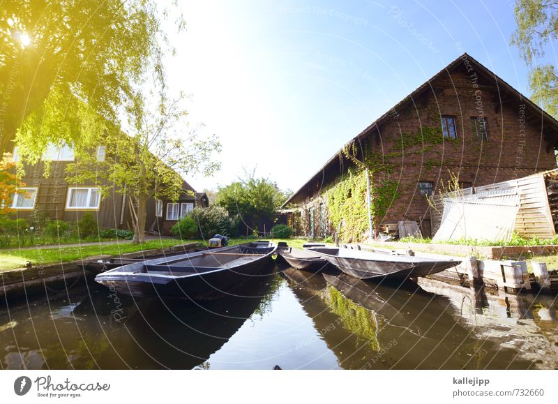boat trip Vacation & Travel Tourism Trip Freedom Sightseeing Lakeside River bank Village Fishing village Authentic Spree Spreewald Fishing boat Quaint Jetty