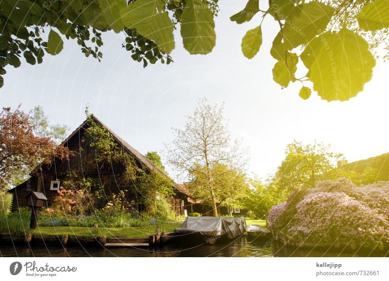 house on the lake Environment Nature Pond Lake Brook River Village Fishing village House (Residential Structure) Detached house Warmth Spreewald Wooden house