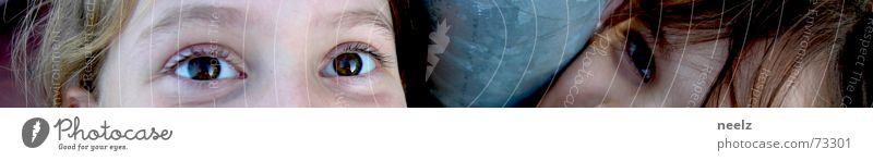 Child Joy Eyes Laughter Lighting Watchfulness Smart Absurdity Alert Human being