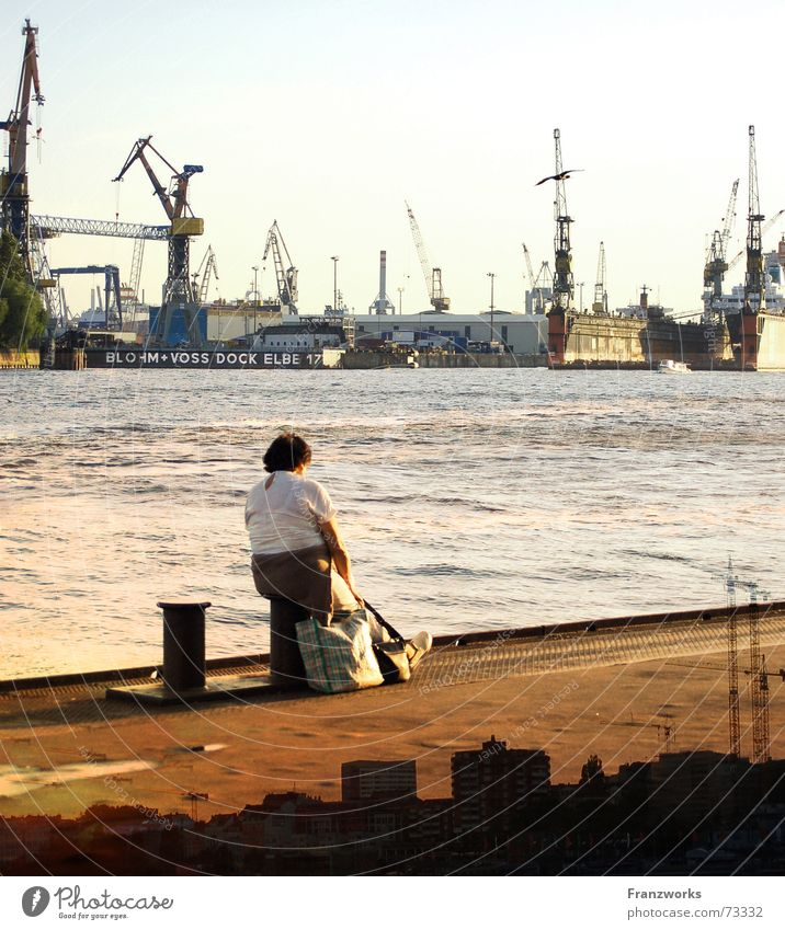 Woman Water Vacation & Travel Hamburg River Harbour Skyline Jetty Wanderlust Crane Container Elbe Dock Bollard Shipyard