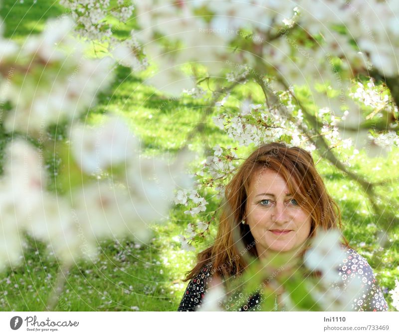 AST 7 | Cherry blossom bitti I Human being Feminine Young woman Youth (Young adults) Head Hair and hairstyles Face Eyes Nose Mouth Lips 1 Sun Spring Tree