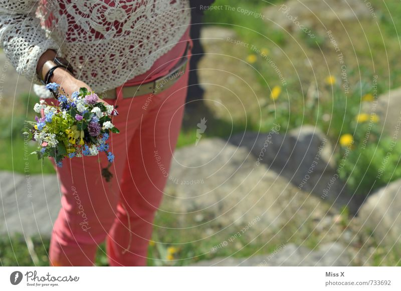 little flowers Mother's Day Birthday Human being Feminine Young woman Youth (Young adults) 1 Spring Flower Blossom Pants Blossoming Fragrance Multicoloured