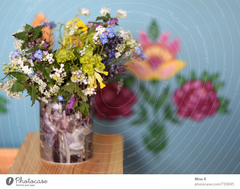 farmhouse bouquet Flat (apartment) Decoration Spring Summer Flower Blossom Blossoming Fragrance Multicoloured country house style Vase Bouquet Cowslip plants