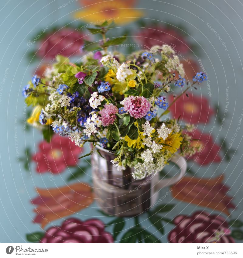 bouquet of meadow flowers Mug Mother's Day Plant Spring Summer Flower Blossom Wild plant Blossoming Fragrance Multicoloured Moody Infatuation Romance Bouquet