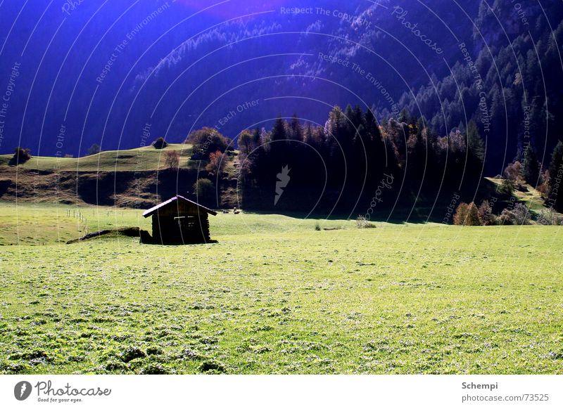 Summer Meadow Alps Idyll Cow Hut Color gradient