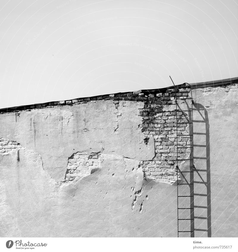 roof Wall (barrier) Wall (building) Facade Roof Ladder Fire ladder Plaster Building stone Old Exceptional Historic Broken Trashy Town Effort Threat Contentment