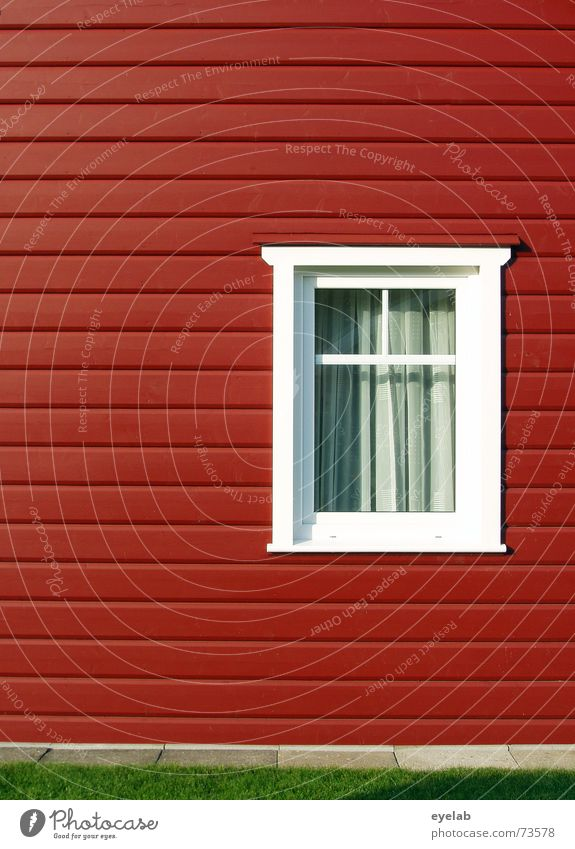 Swedish fancy Window Clean White Green Red House (Residential Structure) Wood Wood flour Building Wall (building) Curtain Sweden Lawn grass Garden