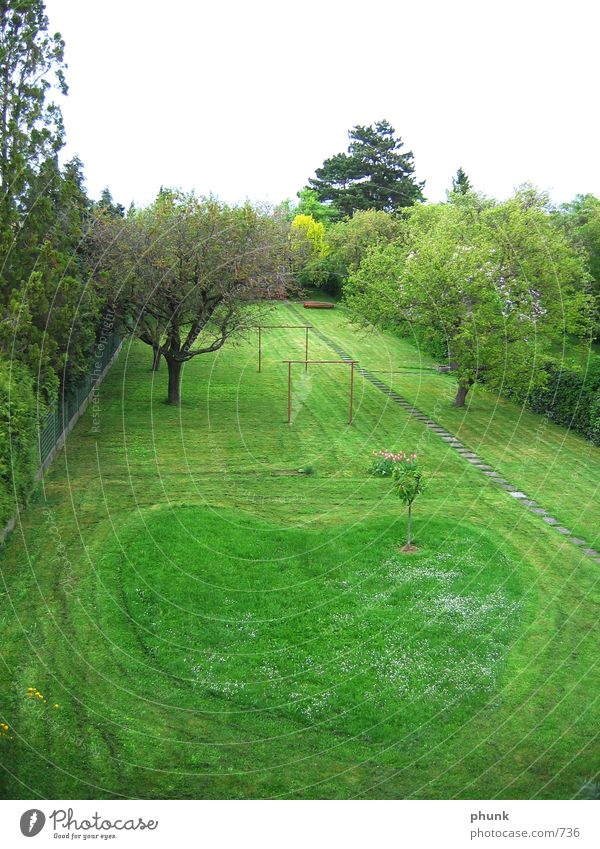 racing heart original with arrow Grass Lawn Mow the lawn Heart Arrow Love Garden